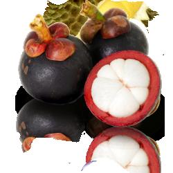 Мангостан - король фруктов