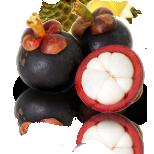 Mangustan - puuviljade kuninganna